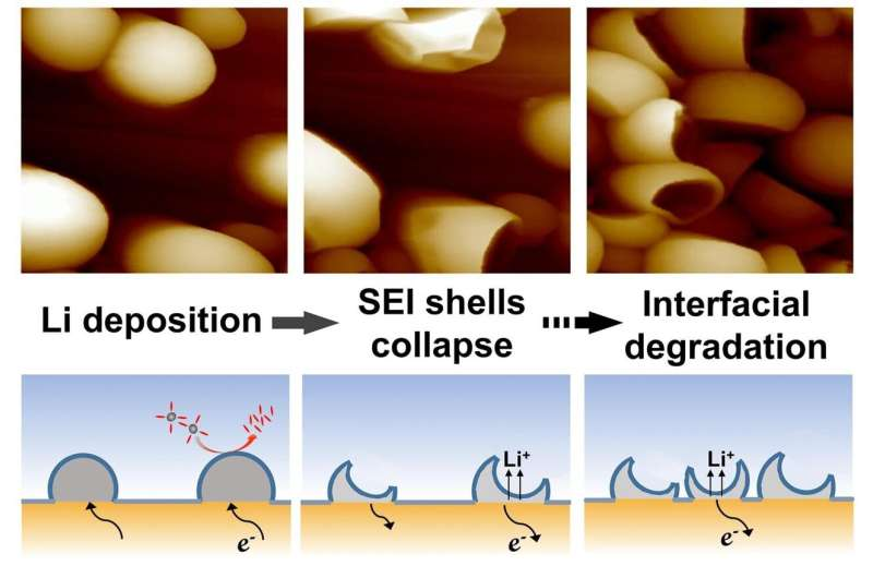In-situ nanoscale insights into the evolution of solid electrolyte interphase shells