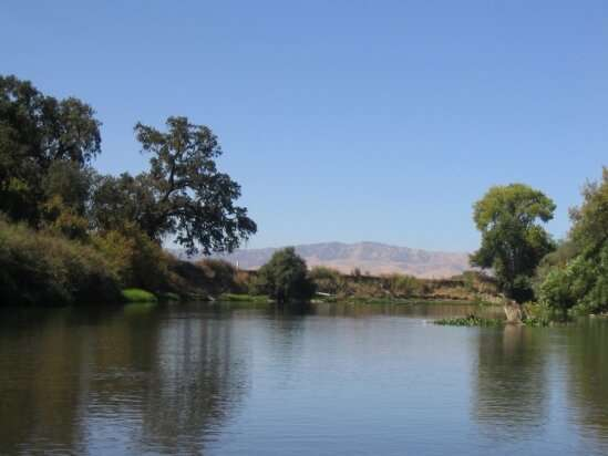 Intensive water management in California promotes 'live fast, die young' cycle in floodplain forests