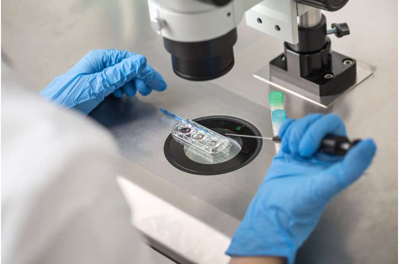 IVF success rates have improved in the last decade, especially in older women