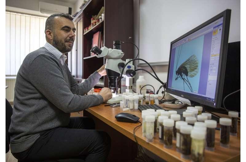 Kosovar biologist calls newly found insect after coronavirus