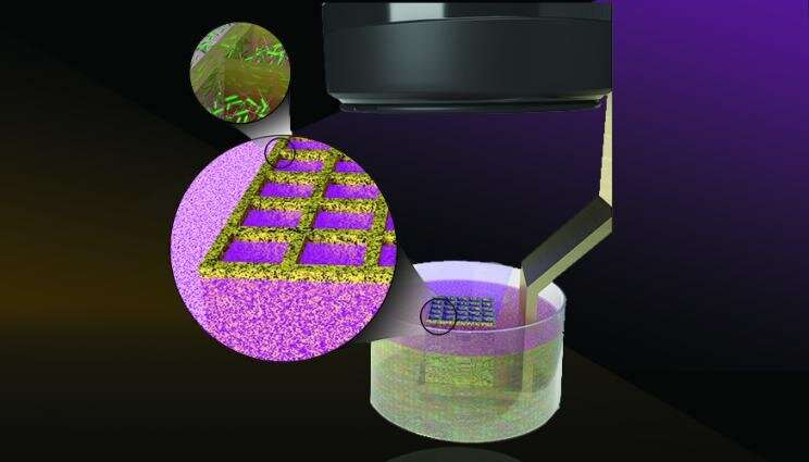 Lab 3-D-prints microbes to enhance biomaterials