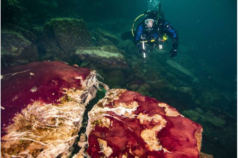 Lake Huron sinkhole surprise: The rise of oxygen on early Earth linked to changing planetary rotation rate