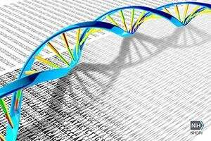 Landmark study details sequencing of 64 full human genomes to better capture genetic diversity