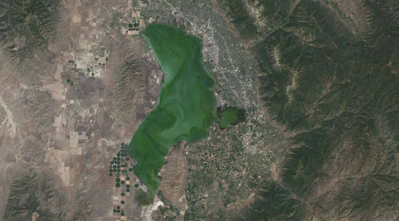 Landsat satellite data warns of harmful algal blooms