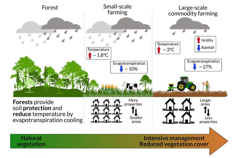 Large-scale commodity farming accelerating climate change in the Amazon rainforest