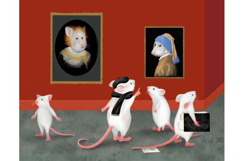 Learning skills of mice help researchers pinpointing brain areas where acquired knowledge is stored