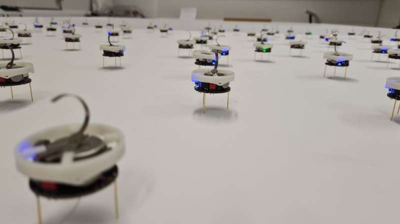 Lesson from a robot swarm: Change group behavior by talking one-on-one rather than getting on a soapbox