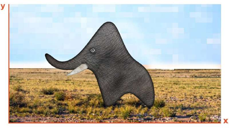 Let's talk about the elephant in the data