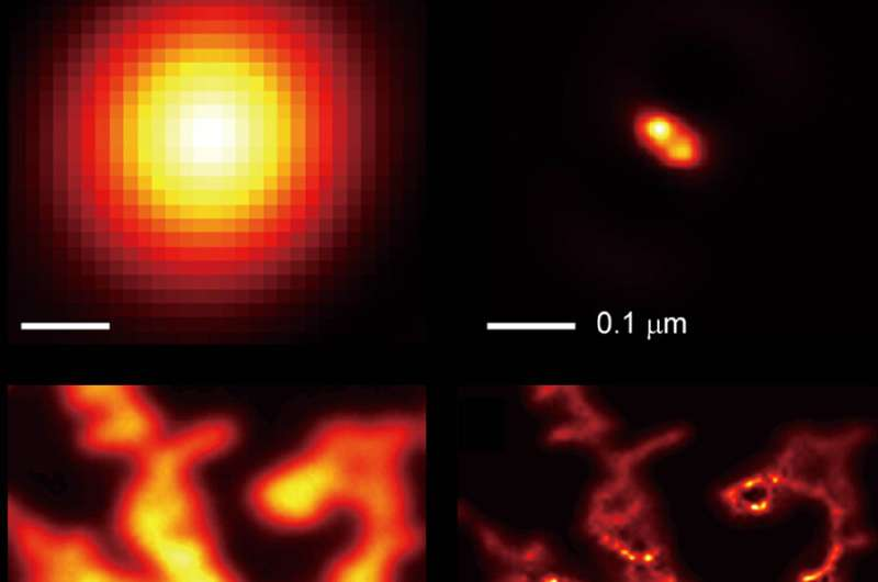 Light-shrinking material lets ordinary microscope see in super resolution