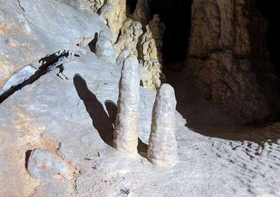 'Like a metronome': stalagmite growth found to be surprisingly constant