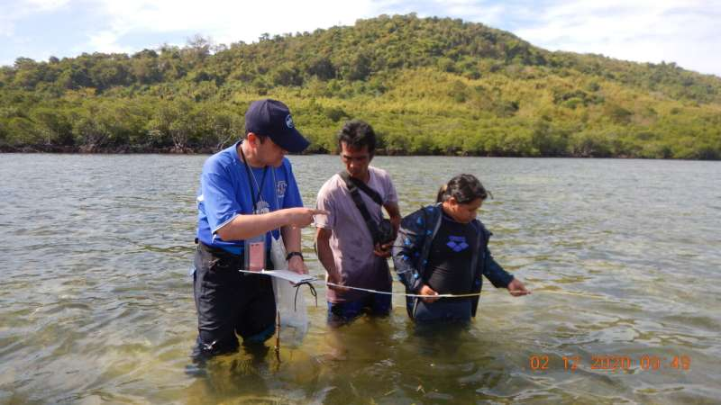 Linking humans with blue carbon ecosystems