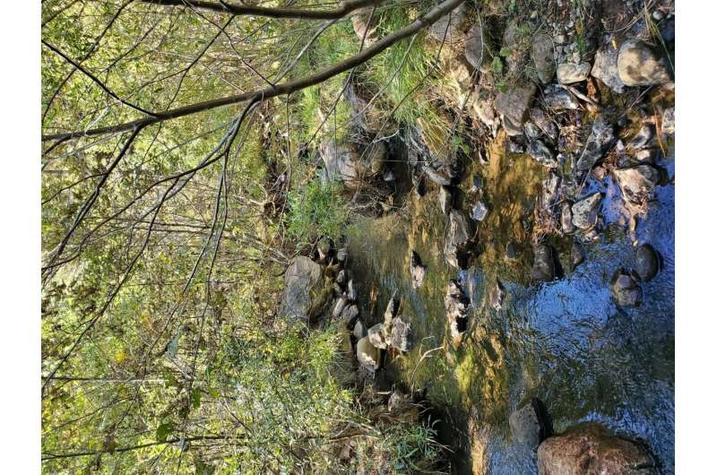Long-term monitoring shows successful restoration of mining-polluted streams
