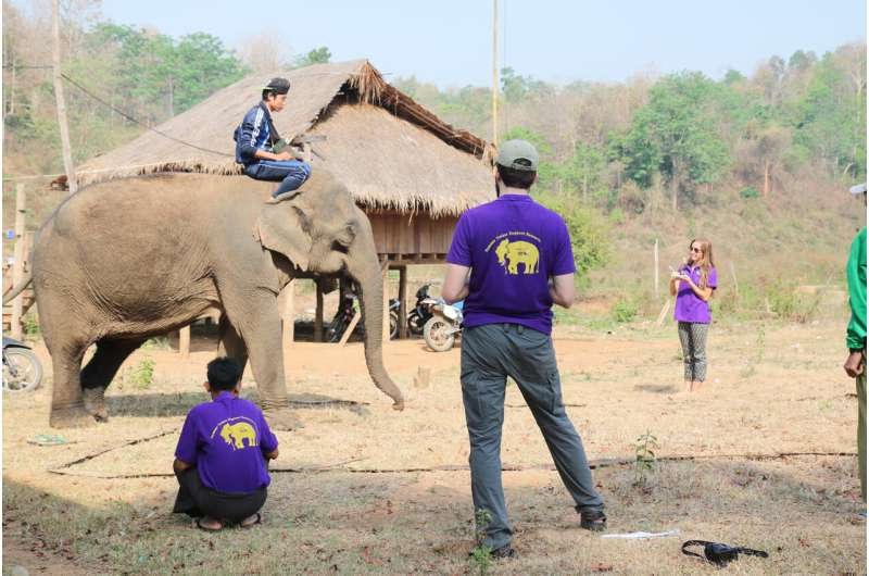 Longer relationship between elephant and its handler improves their co-operation during working tasks