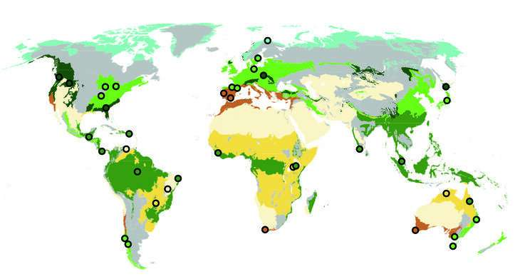 Loss of biodiversity in streams threatens vital biological process