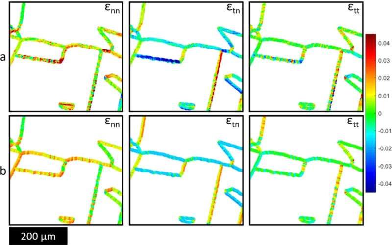 L'apprentissage automatique utilisé pour prédire le comportement de l'acier inoxydable au niveau microstructural