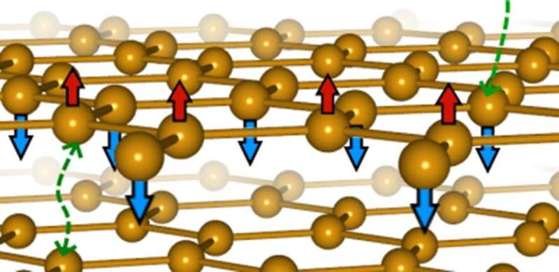 'Magnetic graphene' forms a new kind of magnetism