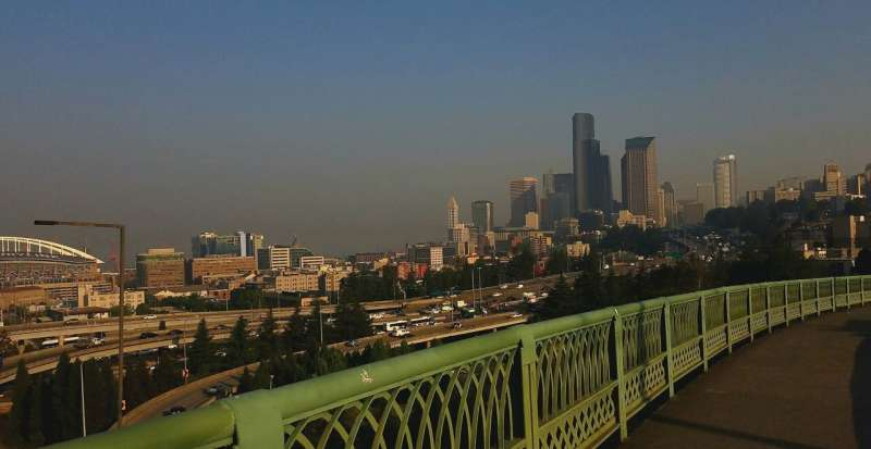 Major chronic health problems facing children today linked to air pollution