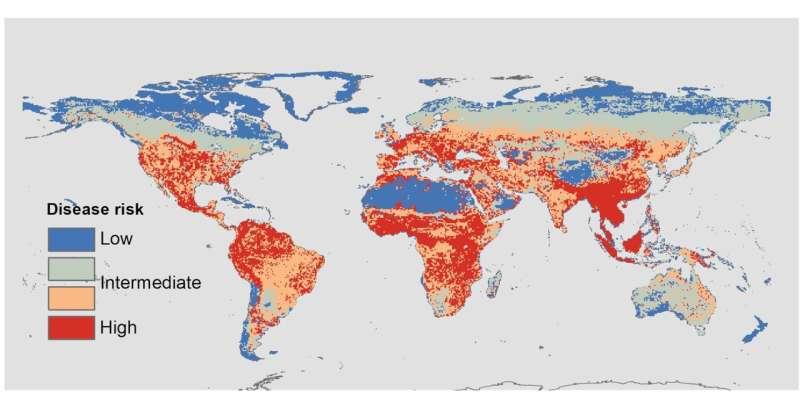 Mammal biodiversity shapes disease risk