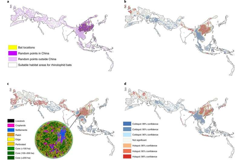 Mapping zoonotic 'hot spots' where risk of coronaviruses jumping from bats to humans is highest
