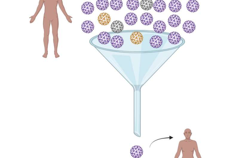 Massive numbers of new COVID–19 infections, not vaccines, are the main driver of new coronavirus variants