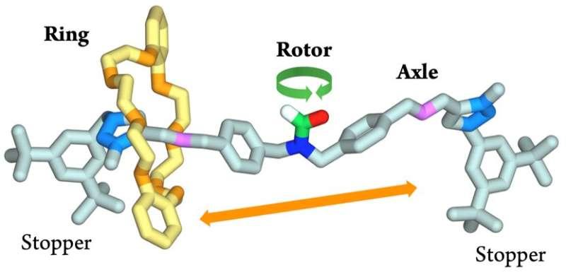 Mechanics of the infinitely small: NanoGear, towards a molecular gear