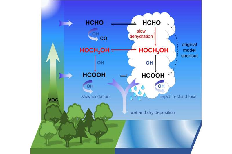 Mechanism deciphered: How organic acids are formed in the atmosphere