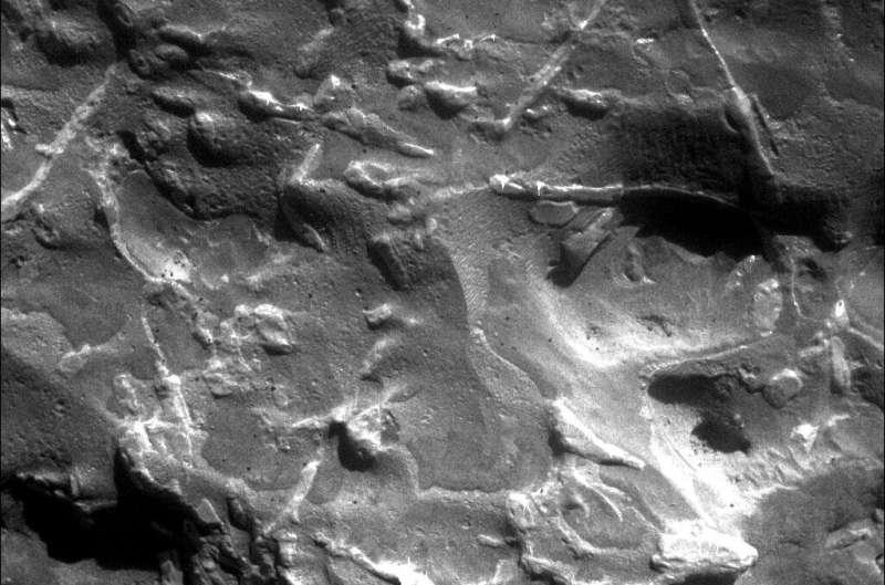 Meet the Martian meteorite hunters