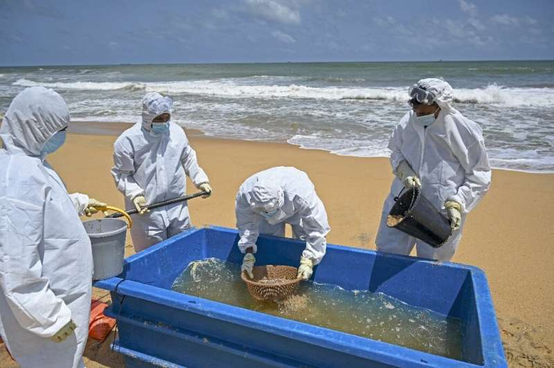 Members of the Sri Lankan Navy work to remove debris washed ashore from the Singapore-registered container ship MV X-Press Pearl
