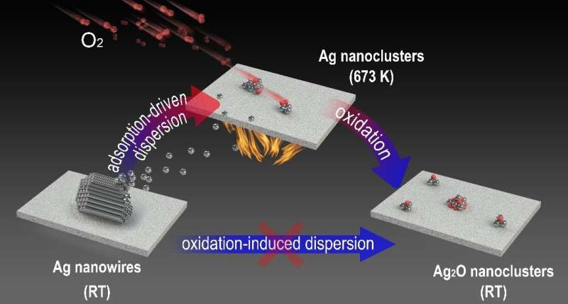 Metallic state of Ag nanoclusters in oxidative dispersion identified in situ