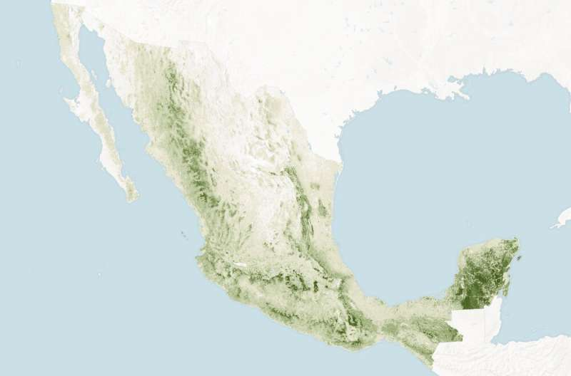 Mexican communities manage their local forests, generating benefits for humans, trees andwildlife