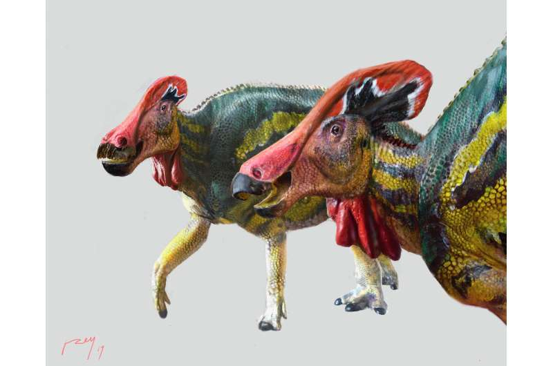 Mexican paleontologists identify new 'talkative' dinosaur species