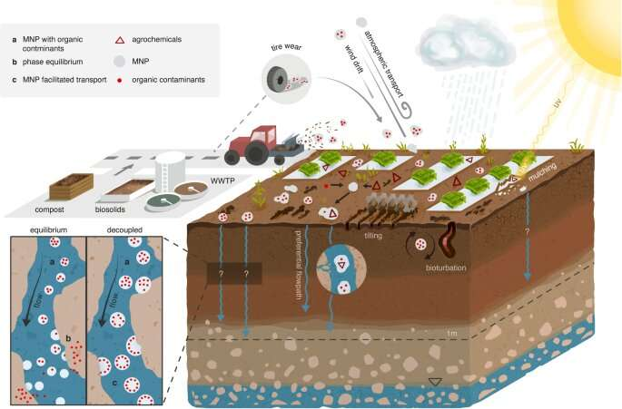 Microplastics do not contribute to the mobility of organic pollutants in agricultural soils