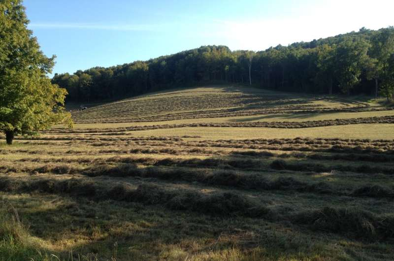 Los métodos agrícolas mixtos podrían reducir las emisiones de EE. UU. Y aumentar la productividad