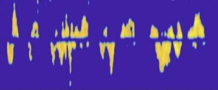Modified headphones translate sign language via Doppler