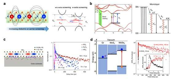 Modulation of photocarrier relaxation dynamics in two-dimensional semiconductors