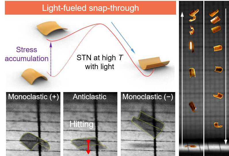 Molecular Switch Enables Photomechanical Jumping of Polymers
