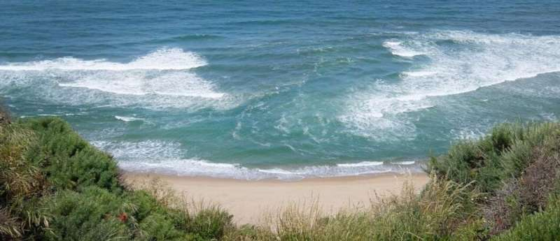 Most people can't identify deadly rip current, expert finds