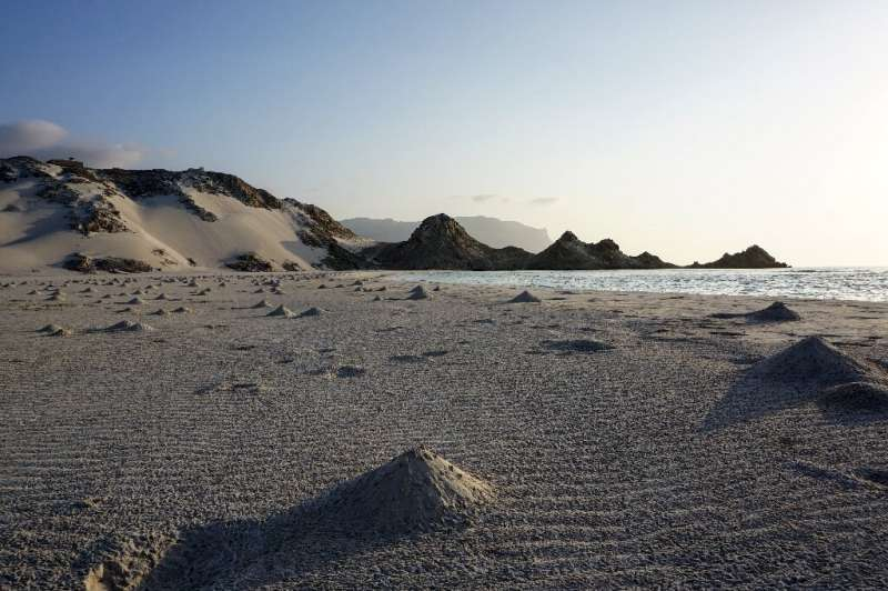 Mounds made by crabs are pictured on the white sands of Detwah Lagoon, on the far west of the Yemeni island of Socotra