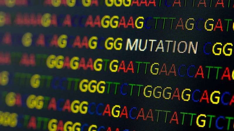 Mutation rate of COVID-19 virus is at least 50 percent higher than previously thought