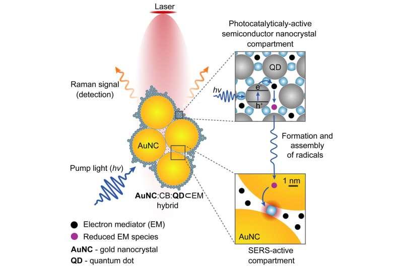Nano 'camera' made using molecular glue allows real-time monitoring of chemical reactions