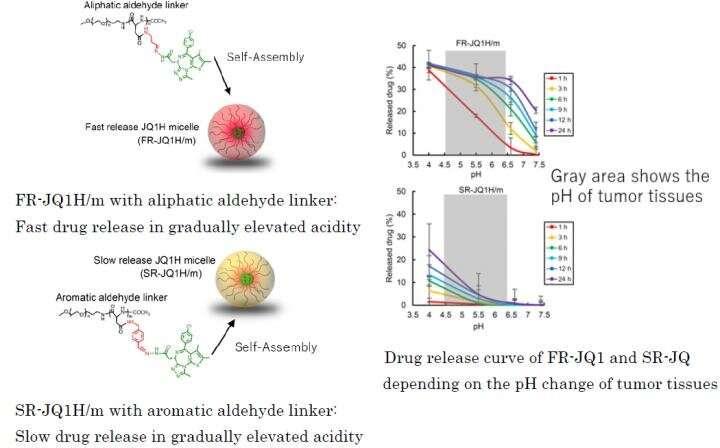 Nanomedicine activation profile determines efficacy depending on tumor c-Myc expression