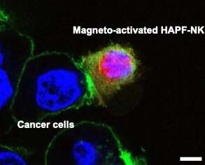 Nanoparticles could boost immunotherapy