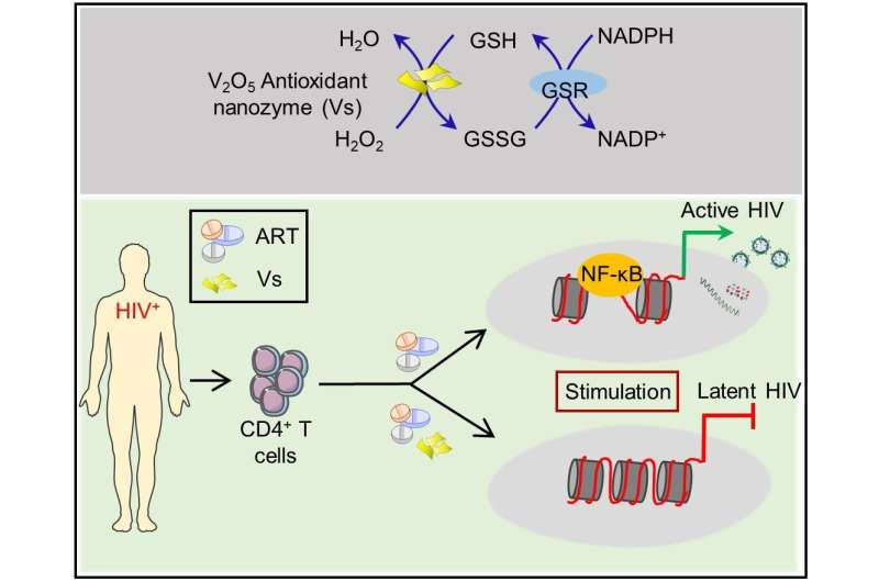 Nanozymes that can block HIV reactivation