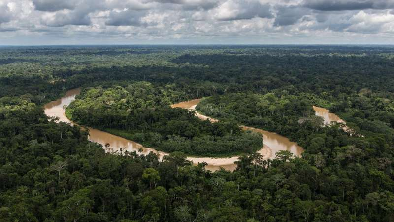 NASA study finds tropical forests' ability to absorb carbon dioxide is waning