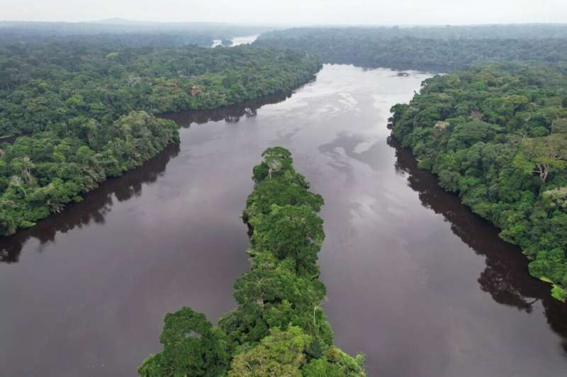 Nearby forest loss predicts future deforestation on protected lands