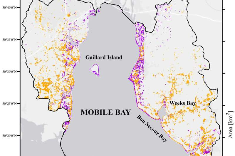 Nearly a third of Mobile Bay marshes gone since 1980s, study finds