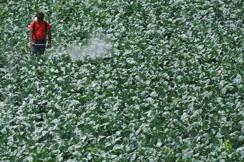 Nearly two-thirds  of global agricultural land is at risk of pesticide pollution, a study says