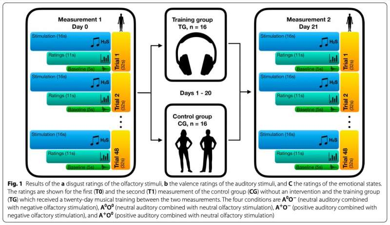 Neuroscientists assess the impact of a short-term musical training on implicit emotion regulation
