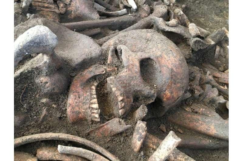 New, almost non-destructive archaeogenetic sampling method developed