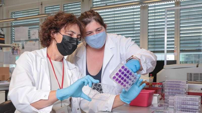 New blood test measures immunity against SARS-CoV-2